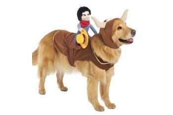 Headless Horseman Pet Rider Costume, $9, Target.com