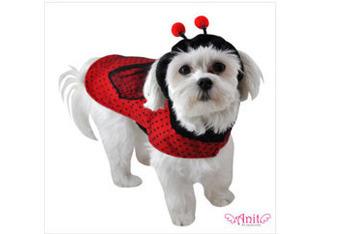 Ladybug dog costume, $19.95, WalMart.com
