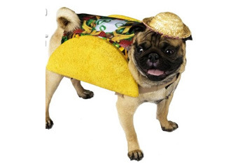 Taco costume, $15.99, Target.com