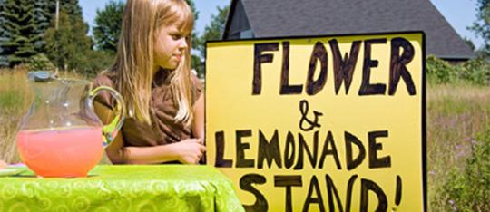 Start a Lemonade or Flower Stand