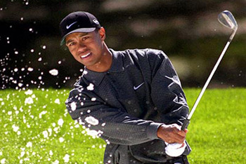 Tiger's in Tough