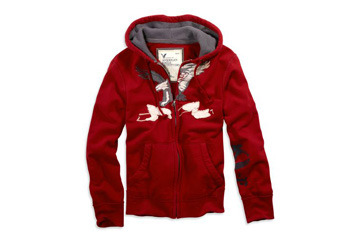 Embroidered hoodie from AmericanEagle.com, $39.50