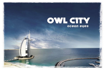 Adam Young is the voice behind Owl City