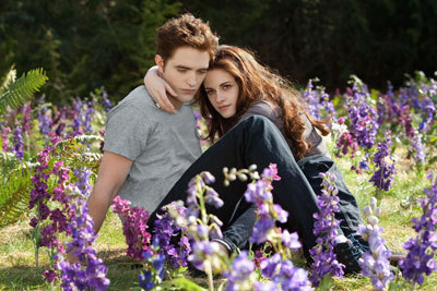 Bella and Edward in their field