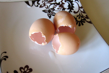 Hollowed Out Eggshells