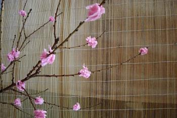 Tissue Paper Cherry Blossom Tree