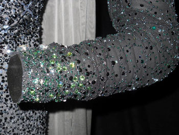Sleeve detail Evanora dark dress