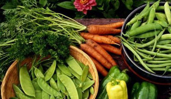 Organic food isn't treated with pesticides and chemicals