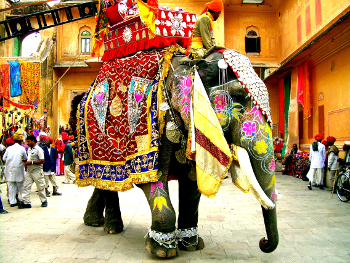 In India elephants are decorated