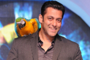 Preview salman khan preview