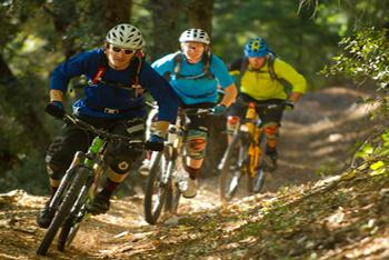 Top 5 Mountain Bikes under $1000