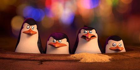 Penguins decide their next move