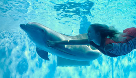 Bethany's favorite part of filming? Swimming with dolphins of course!