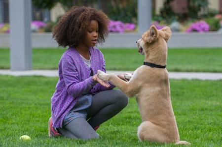 Annie tells Sandy to keep hoping