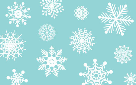 Snowflakes come in all different shapes and sizes!