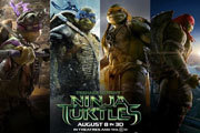Preview teenage turtles pre
