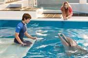 Preview dolphin tale nathan austin pre