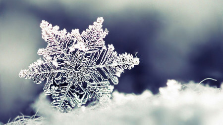 Snowflake under a microscope