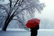 Kidzworld can help you learn more about Seasonal Affective Disorder.