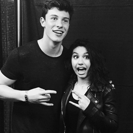 Shawn Mendes and Alessia Cara both hit the Top 10 in 2015