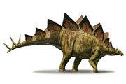 Preview stegosaur pre