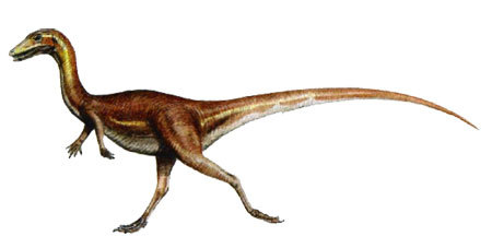 Procompsognathus Dinosaur