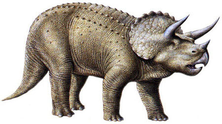 Triceratops have 3 horns