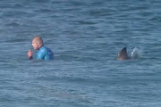 Preview mick fanning shark attack pre