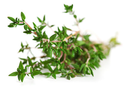 Tea made of thyme can help ease your cough!