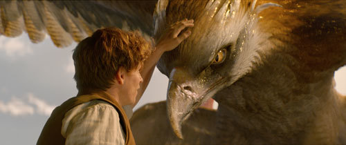 Newt (Eddie) pets the glorious Thunderbird