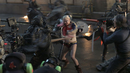 Harley in action on set