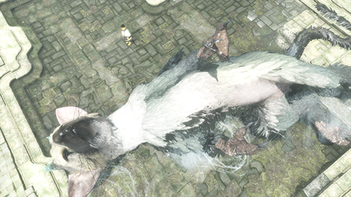 Trico plays and emotes just like a real dog might.