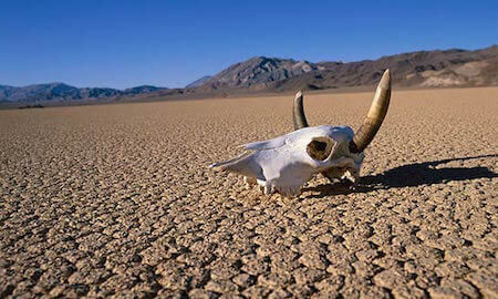 Death Valley is one of the driest places on Earth!