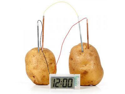 potato-battery-clock.jpg