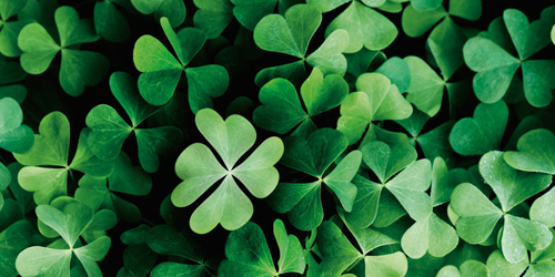 Find your luck charm