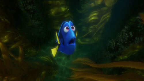 Dory lost and afraid