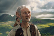 Preview the bfg review pre