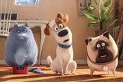 Preview secret life pets pre
