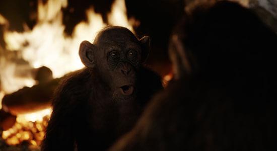 Bad Ape (Steve Zahn) meets Caesar