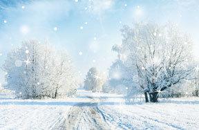 Preview winter pre