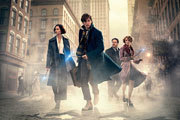 Preview fantastics beasts where to find pre