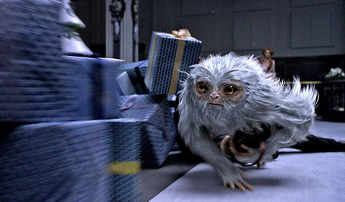 The magical Demiguise on the loose