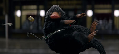 The Niffler loves shiny things