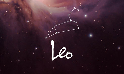 Leo has an energy about them that makes everything better.
