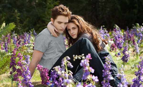 Edward and Bella in their beloved meadow