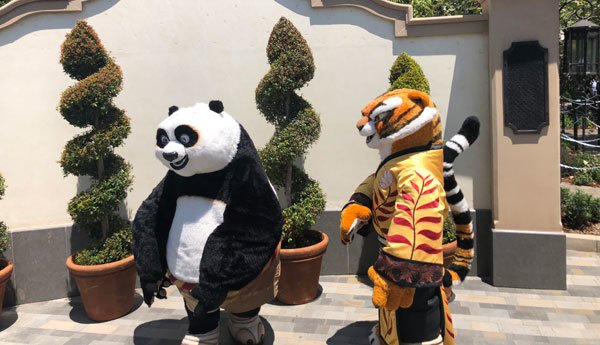 Meet Tigress and Po from Kung-Fu Panda