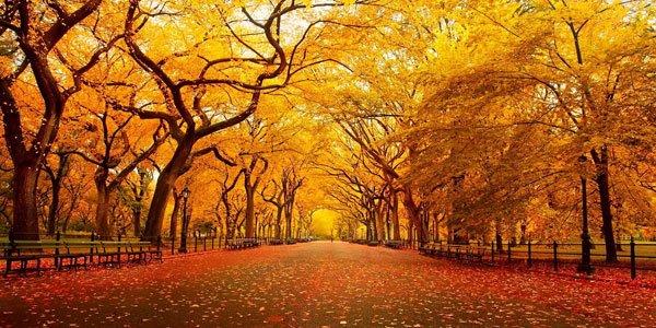 Feature autumn equinox feat