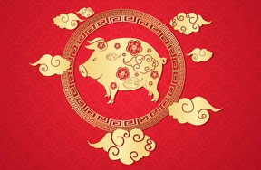 Preview new year chinese new year pig pre