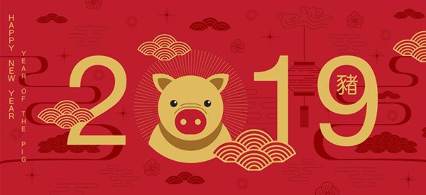 2019 is the Year of the Pig