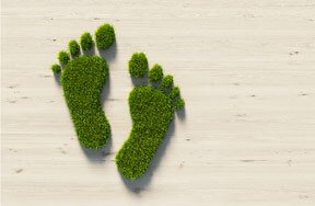 Preview carbon footprint pre